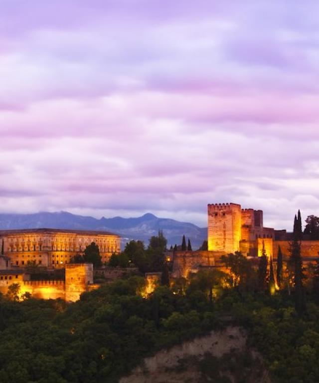 06/2015 CILE Granada Summer School